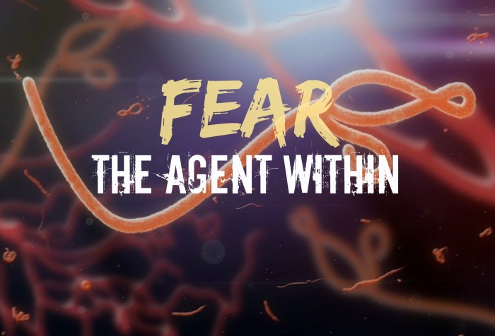 The Agent Within